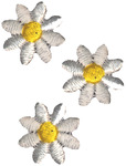 White Daisies - Wrights Iron-On Appliques 3/Pkg