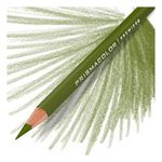 Olive Green - Prismacolor Premier Colored Pencil