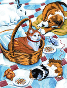 """Family Pets - Color Pencil By Number Kit 8.75""""X11.75"""""""