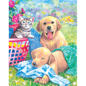 "Wash Day Fun - Color Pencil By Number Kit 8.75""X11.75"""