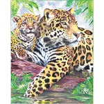 "Jaguar Family - Color Pencil By Number Kit 8.75""X11.75"""