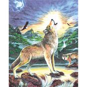 "Wolf At Night - Color Pencil By Number Kit 8.75""X11.75"""