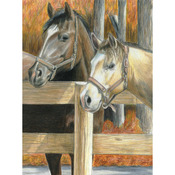 "Buck's Pal - Color Pencil By Number Kit 8.75""X11.75"""