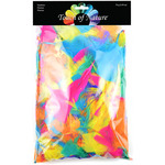 Vibrant Mix 70 Grams - Big Value Pack Feathers