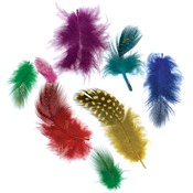 Vibrant - Guinea Plumage Feathers .10 Ounces