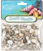 Natural - Craft Shells 50/Pkg