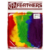 Rainbow - Turkey Flat Feathers 36/Pkg