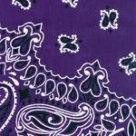 "Hav - A - Hank Paisley Bandannas 22""X22""-Purple"