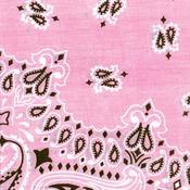 "Hav - A - Hank Paisley Bandannas 22""X22""-Light Pink"