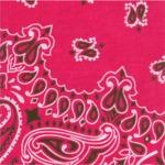 """Hav - A - Hank Paisley Bandannas 22""""X22""""-Hot Pink"""