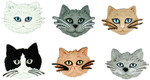 Fuzzy Felines - Dress It Up Embellishments