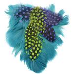 "Teal Goose, Saitnettes & Guinea - Petite Feather Pad 3.75""X3.5"" 1/Pkg"