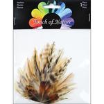 "Natural Hackle & Ringneck Pheasant - Petite Feather Pad 4.5""X3.5"" 1/Pkg"