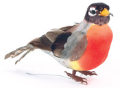 """Robin - Mushroom Bird 4.5"""" 1/Pkg"""