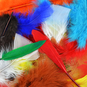 Assorted Colors - Feather Value Pack 71 Grams