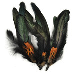 "Natural Cocktail/Pheasant - Feather Picks 5.5"" 3/Pkg"