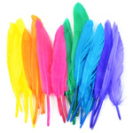"""Bright Mix - Duck Quill Feathers 3"""" 24/Pkg"""