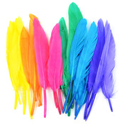 "Bright Mix - Duck Quill Feathers 3"" 24/Pkg"