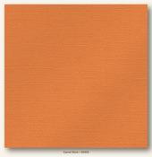 Carrot Stick Glimmer Cardstock - My Minds Eye