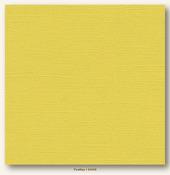 Fireflies Canvas Textured Cardstock - My Minds Eye
