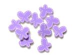 Purple Butterflies - Queen & Co