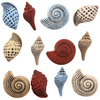 Seashells - Button Theme Pack Buttons Galore-Button Theme Pack. These embellishments provide the perfect finishing touch on any arts & craft creation. Great for sewing, quilting, scrapbooks, jewelry, mixed media and home decor projects. Theme categories range from pets, baby, Victorian, sports and many more (each theme sold separately). Be inspired by the consistent shapes and colors and let your imagination run wild! This 3-1/2x3 inch package contains an assortment of buttons in different colors, sizes and designs. Comes in a variety of assorted colors. Each sold separately. WARNING: Choking Hazard- small parts. Not for children under 3 years of ages. Imported.