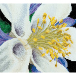 "Columbine On Aida Counted Cross Stitch Kit-6""X5.5"" 18 Count"