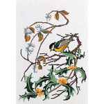 "9.75""X11.75"" 16 Count - Great Tit On Aida Counted Cross Stitch Kit"