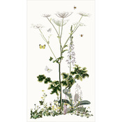 "25.25""X47.25"" 16 Count - Heracleum Sibericum On Aida Counted Cross Stitch Kit"