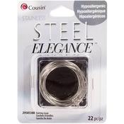 Earring Hoops 22/Pkg - Stainless Steel Elegance Beads & Findings
