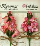 Mauve Velvet Lilacs - Petaloo