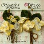 Ivory Velvet Hydrangea Stems - Petaloo
