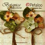 Sage Velvet Hydrangea Stems - Petaloo