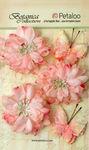 Pink Mums & Butterflies - Petaloo