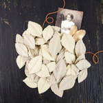 Liam Handmade Leaves - Coy - Prima