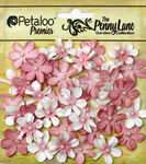 Antique Rose Mini Daisy Petites - Penny Lane - Petaloo