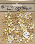 Antique Beige Mini Daisy Petites - Penny Lane - Petaloo