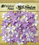 Soft Lavender Mini Daisy Petites - Penny Lane - Petaloo