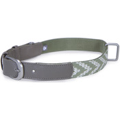 Green - Loved Ones Fashion Dog Collar W/Tag Silencer - Extra Small