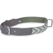 Green - Loved Ones Fashion Dog Collar W/Tag Silencer - Medium