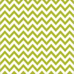 """Chevies Pickle Juice - Color Chaos Clear-Cuts Transparency 12""""X12"""""""