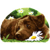 "Chocolate Labrador - Vervaco Shaped Rug Latch Hook Kit 27.5""x18.5"""