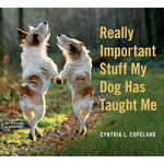 Stuff My Dog Has Taught Me - Workman Publishing