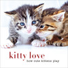 Kitty Love How Cute Kittens Play - Sterling Publishing