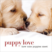 Puppy Love How Cute Puppies Meet - Sterling Publishing