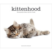 Kittenhood - Stewart Tabori & Chang Books