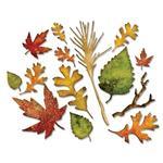 Fall Foliage Dies - Thinlits - Tim Holtz