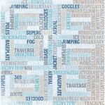 Ski Pass Glitter Paper - Whiteout - Bo Bunny