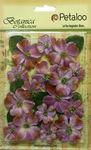 Lavender Velvet Dogwood Assortment - Petaloo