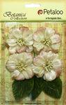 Ivory Vintage Velvet Peonies - Petaloo